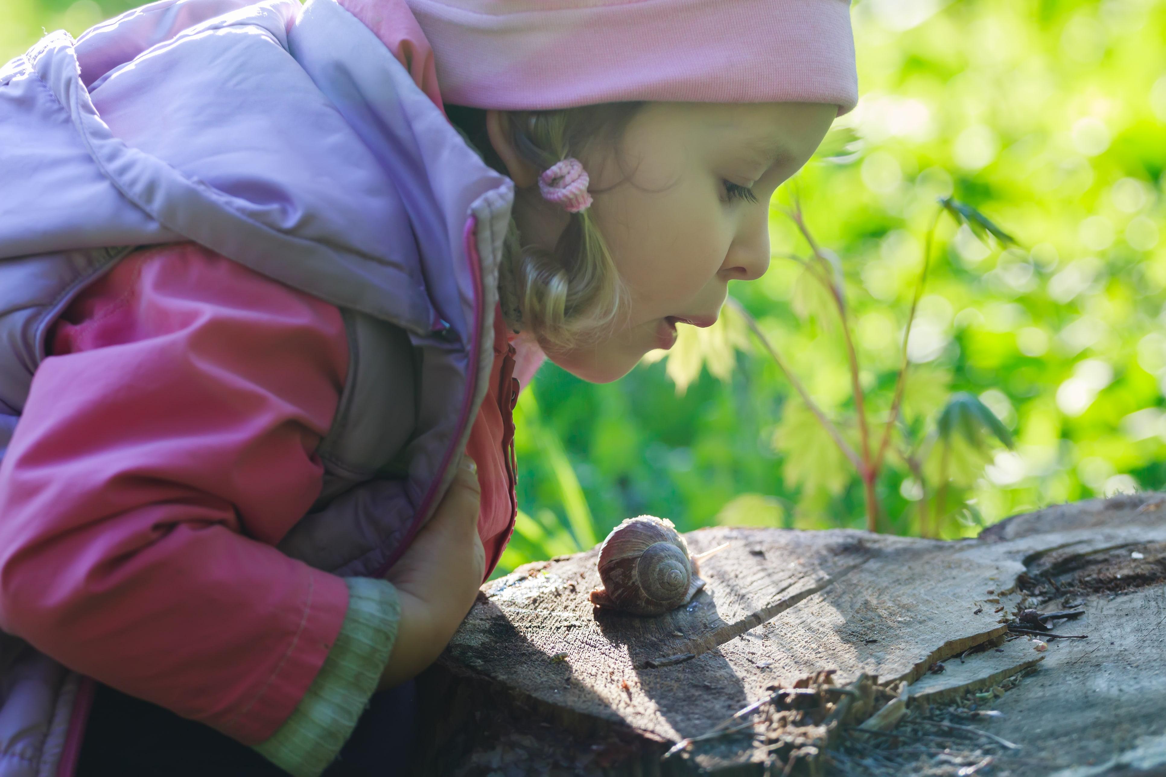 Comment faire manger des escargots vos enfants nos astuces - Cuisiner les escargots ...