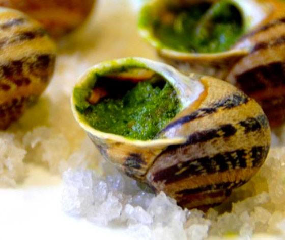 escargot-cuisine-bourguignonne
